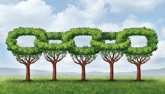 打造卓越供应链之二| 天津创新绿色供应链