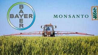 拜耳收购孟山都获欧盟批准 成全球最大种子农化巨头