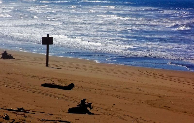 海南:发展离岸贸易走向开放前沿